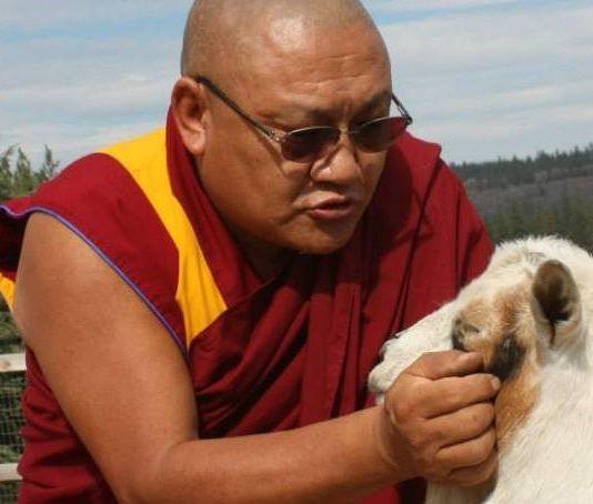 Geshe la Phelgye blesses goat